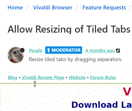 0_1527769014912_Resize Tiled Tabs.png
